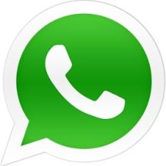 whatsapp-logo-logotipo-midia-indoor-1450301574403_300x300